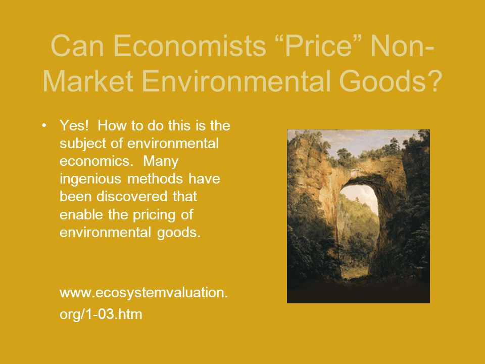 Can Economists Price Non-Market Environmental Goods