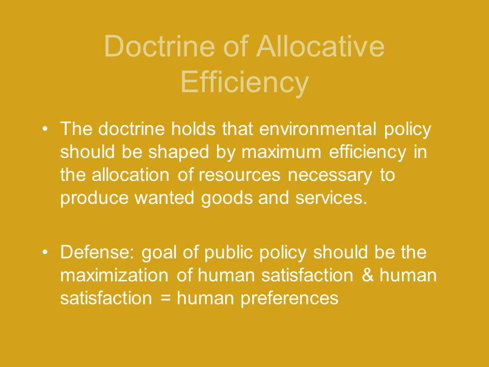 Doctrine of Allocative Efficiency