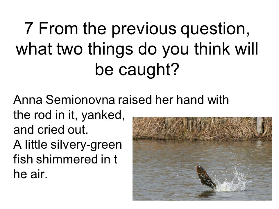 7 From the previous question, what two things do you think will be caught
