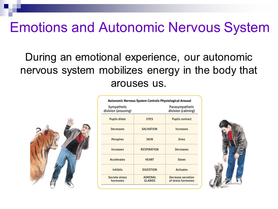 Emotions and Autonomic Nervous System