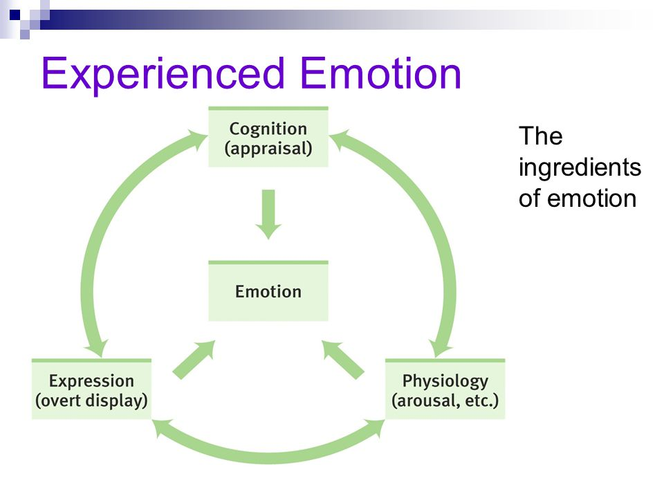 Experienced Emotion The ingredients of emotion