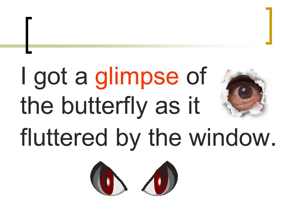 I got a glimpse of the butterfly as it fluttered by the window.