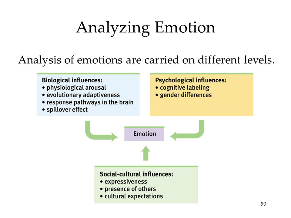 Analyzing Emotion Analysis of emotions are carried on different levels.