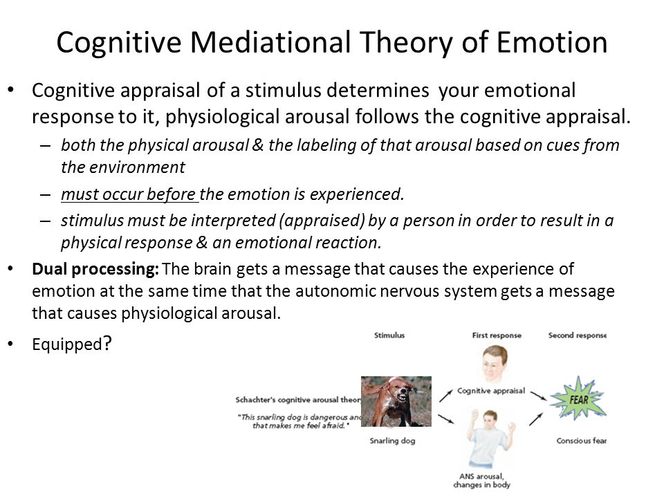 Cognitive Mediational Theory of Emotion