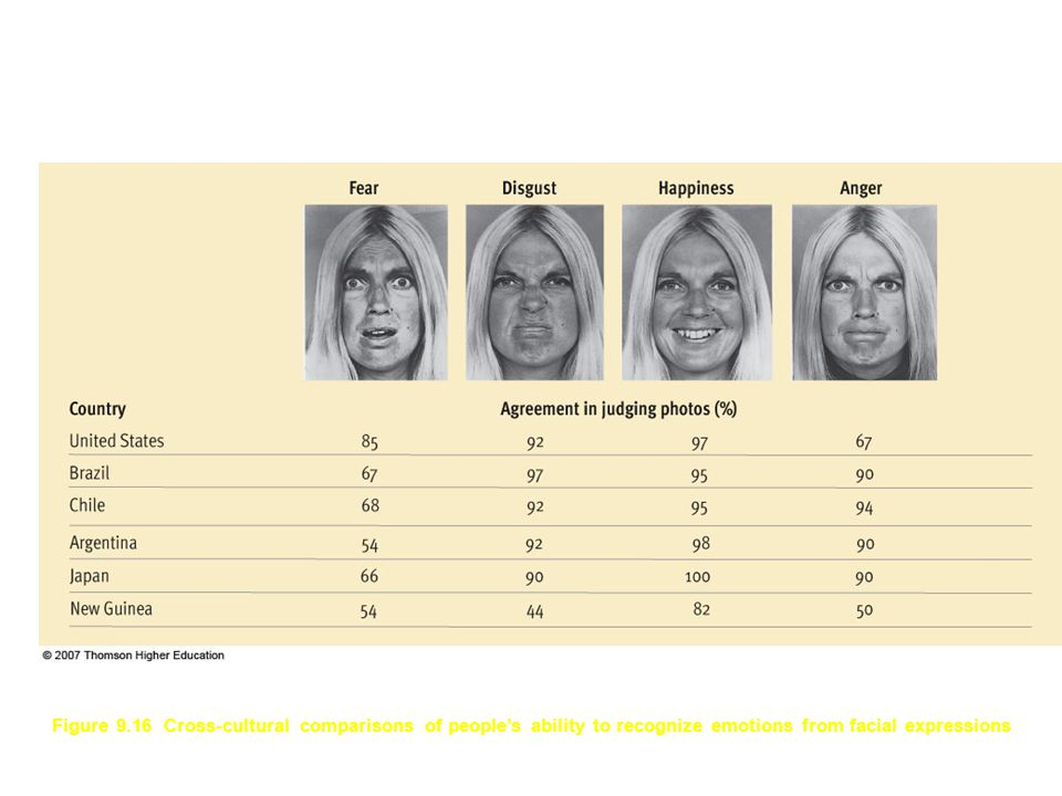 Figure 9.16 Cross-cultural comparisons of people's ability to recognize emotions from facial expressions