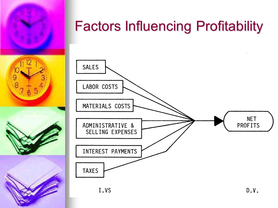 Factors Influencing Profitability