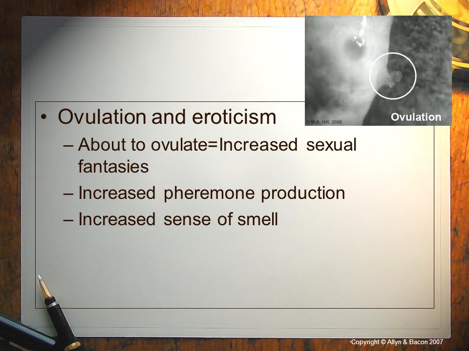 Ovulation and eroticism