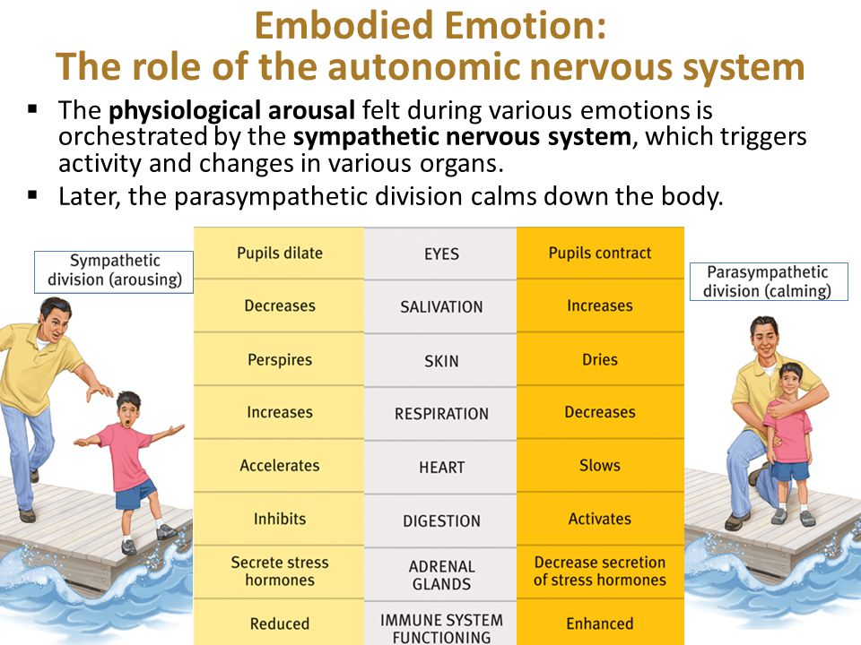 Embodied Emotion: The role of the autonomic nervous system