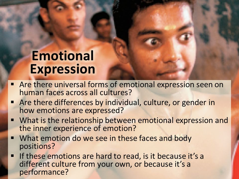 Emotional Expression Are there universal forms of emotional expression seen on human faces across all cultures