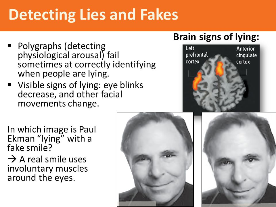 Detecting Lies and Fakes