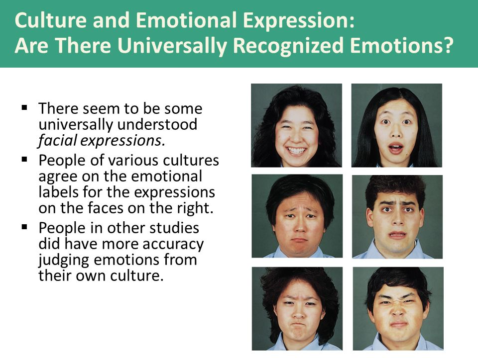Culture and Emotional Expression: Are There Universally Recognized Emotions