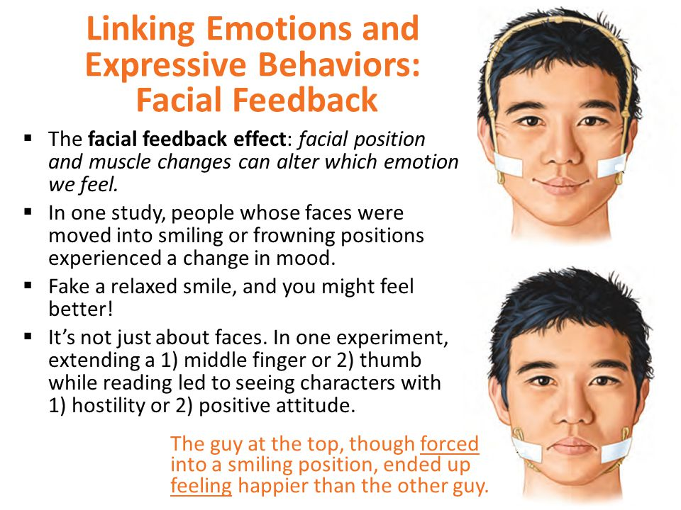 Linking Emotions and Expressive Behaviors: Facial Feedback