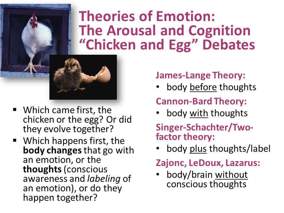 Theories of Emotion: The Arousal and Cognition Chicken and Egg Debates