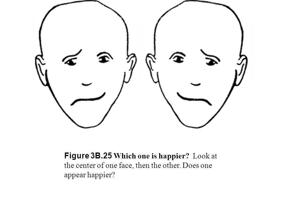 Figure 3B. 25 Which one is happier