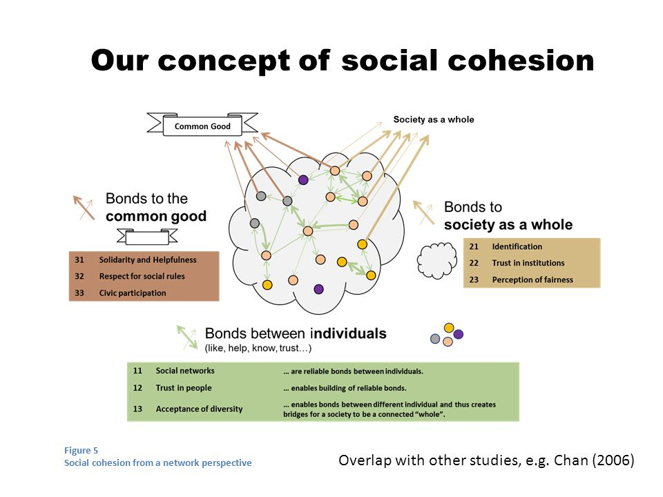 Our concept of social cohesion