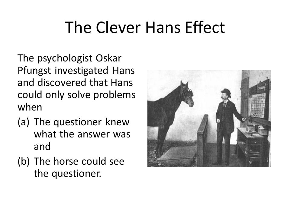 The Clever Hans Effect The psychologist Oskar Pfungst investigated Hans and discovered that Hans could only solve problems when.