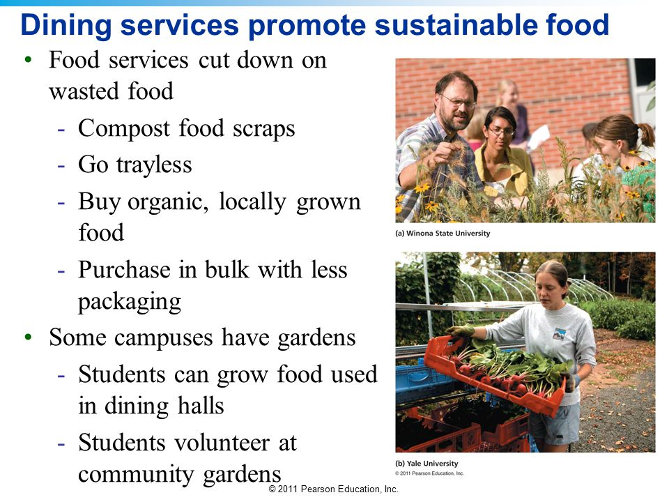 Dining services promote sustainable food