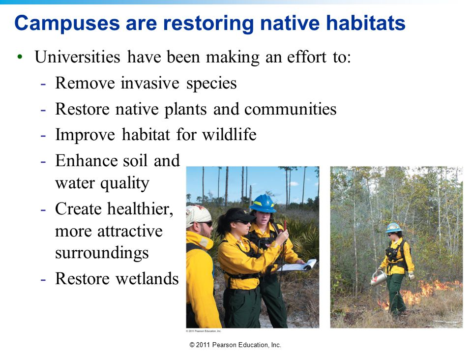 Campuses are restoring native habitats