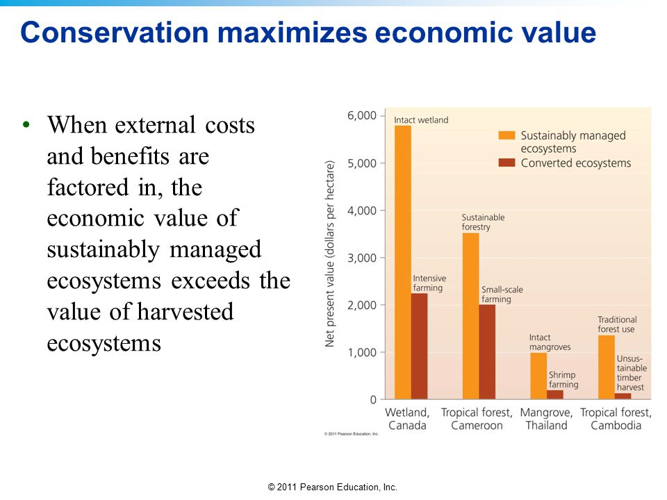 Conservation maximizes economic value