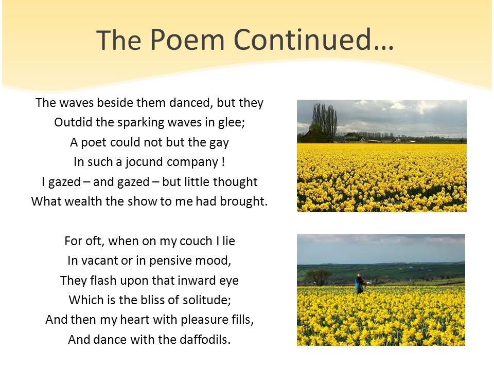 The Poem Continued…