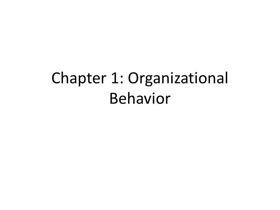 Chapter 1: Organizational Behavior