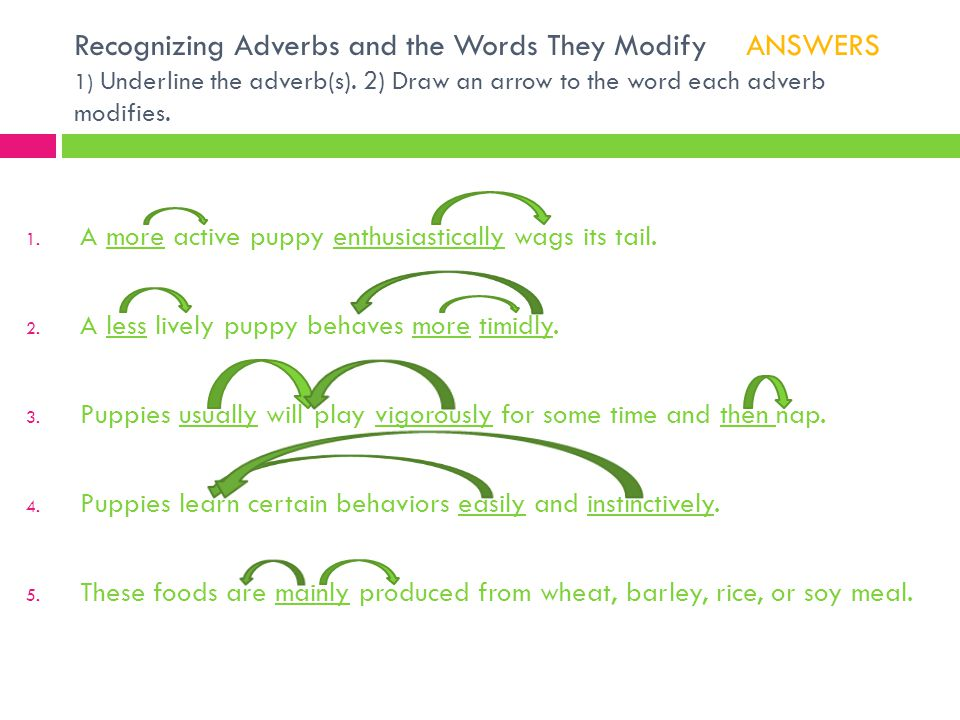 Recognizing Adverbs and the Words They Modify