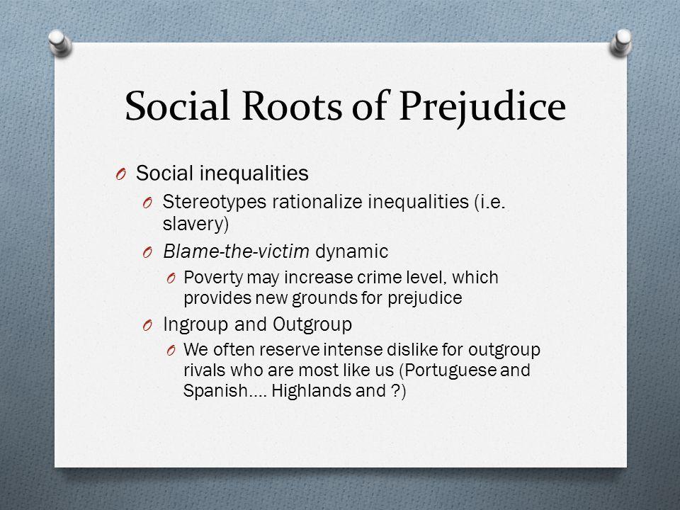 Social Roots of Prejudice