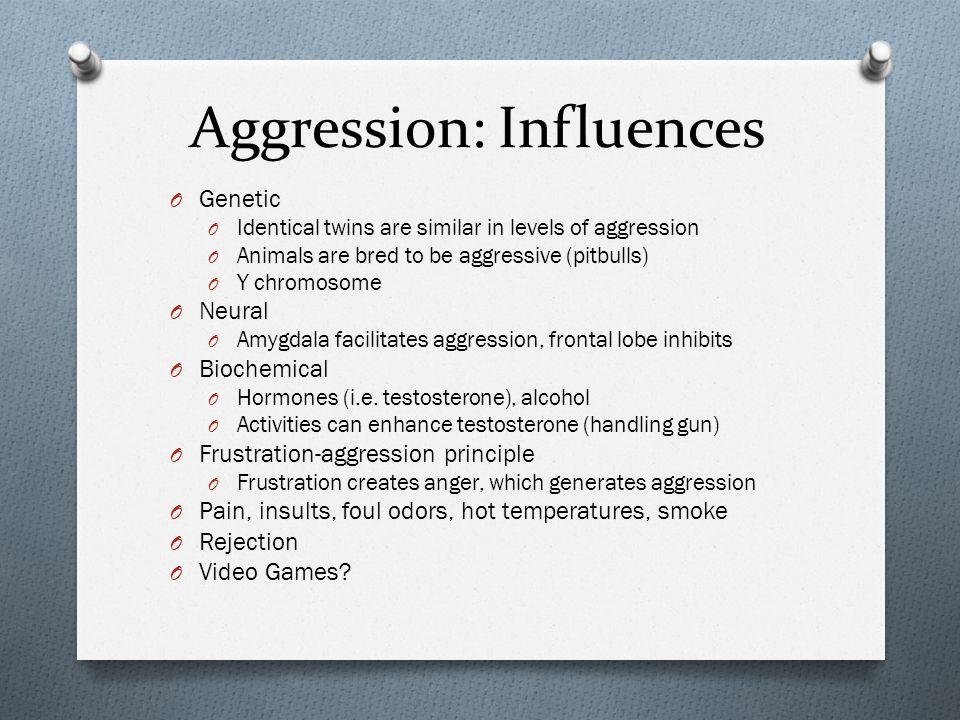 Aggression: Influences