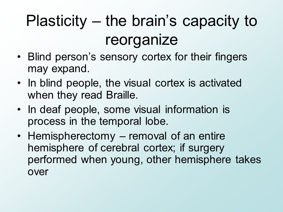 Plasticity – the brain's capacity to reorganize