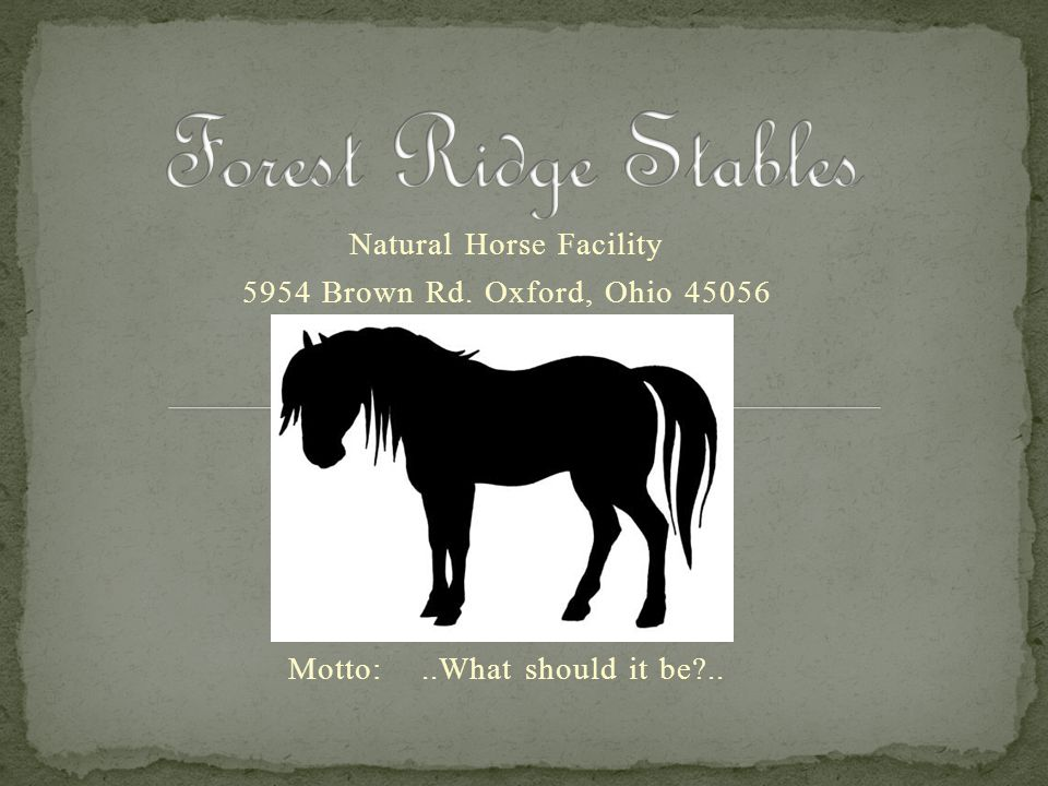 Forest Ridge Stables Natural Horse Facility
