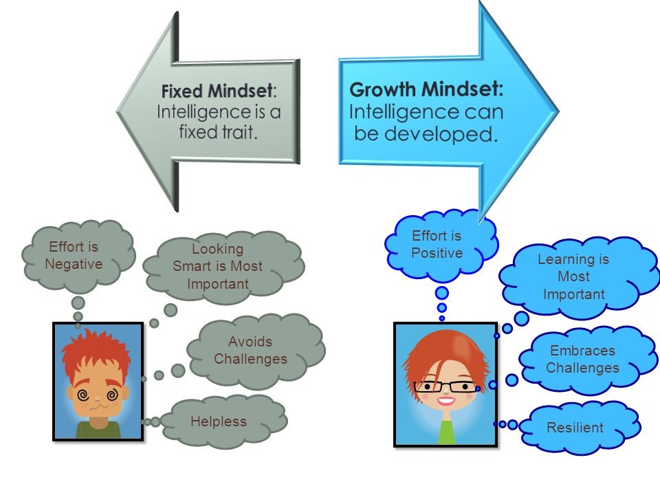 Fixed Mindset: Intelligence is a fixed trait.