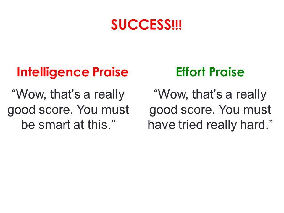 SUCCESS!!! Intelligence Praise Effort Praise