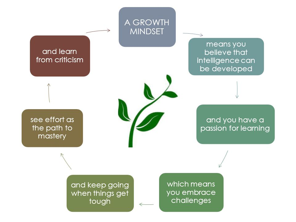 A GROWTH MINDSET means you believe that intelligence can be developed