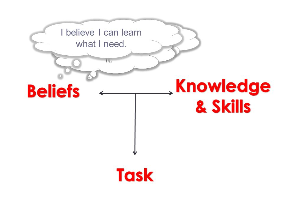 Knowledge & Skills Beliefs Task