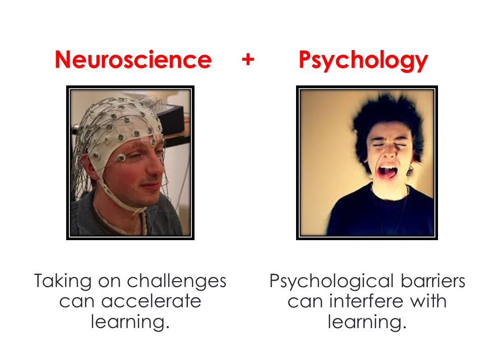 Neuroscience + Psychology