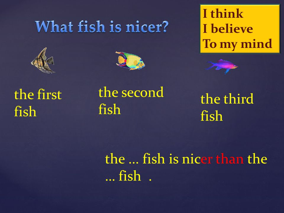 What fish is nicer the second fish the first fish the third fish