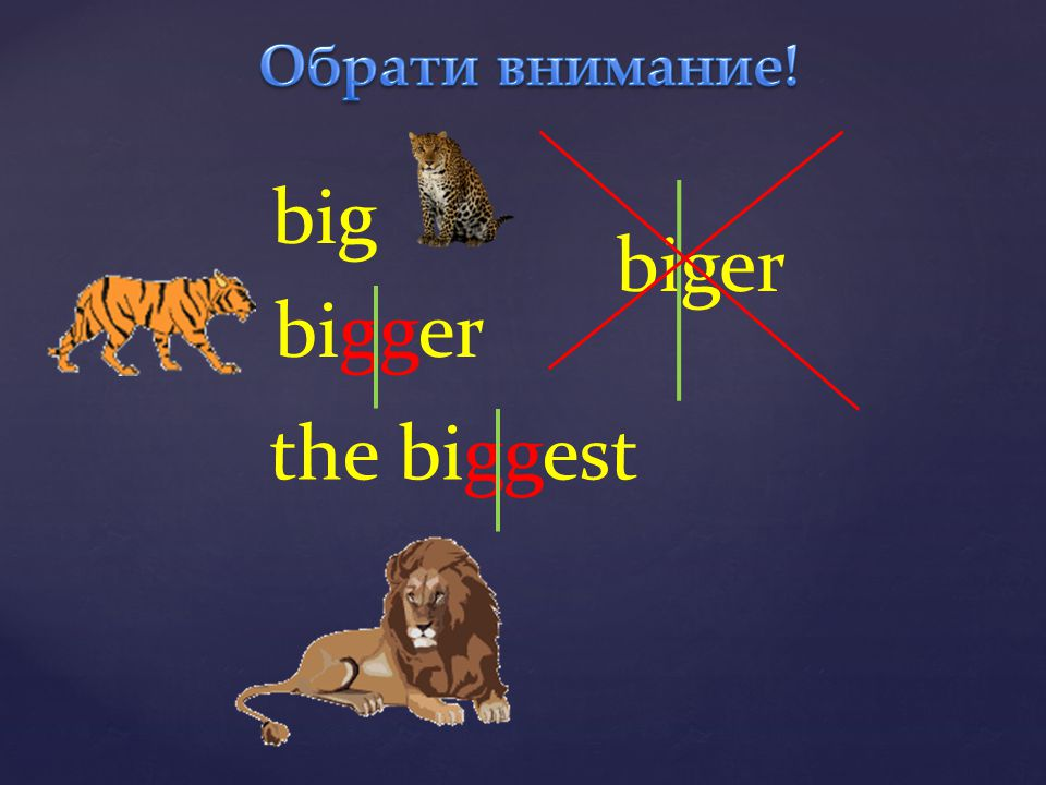 Обрати внимание! big biger bigger the biggest