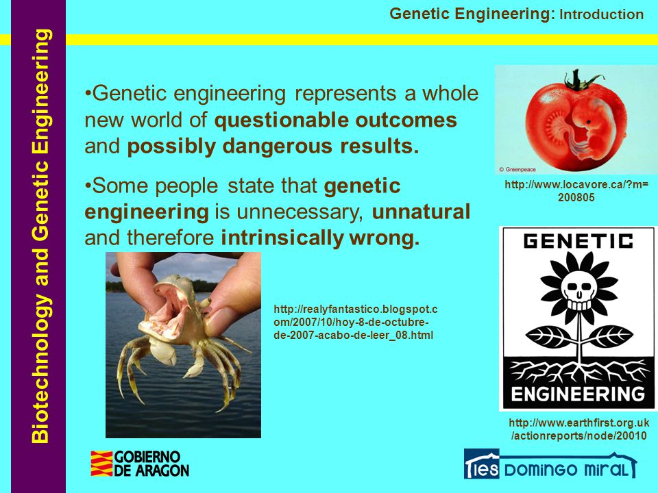 Genetic engineering represents a whole new world of questionable outcomes and possibly dangerous results.