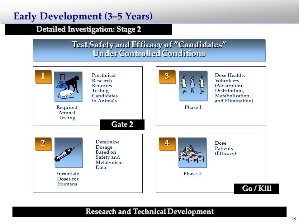 Disciplines Involved in Drug Development Research