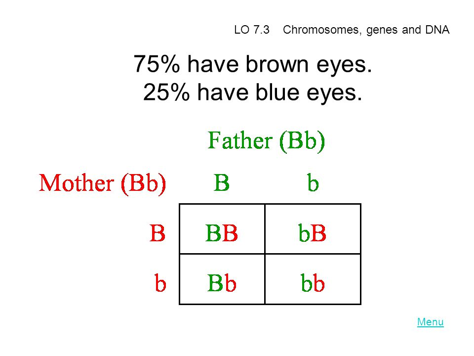75% have brown eyes. 25% have blue eyes.