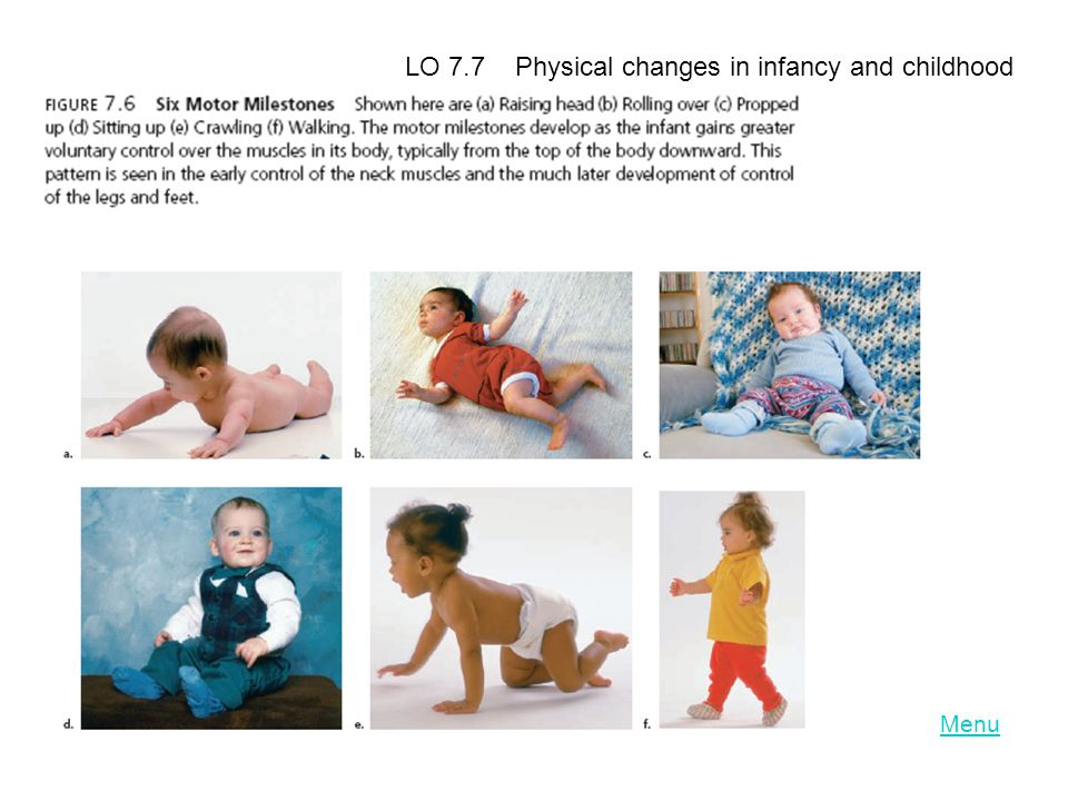 LO 7.7 Physical changes in infancy and childhood