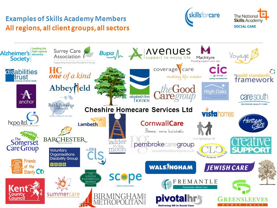 Examples of Skills Academy Members All regions, all client groups, all sectors