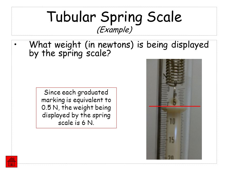 Tubular Spring Scale (Example)