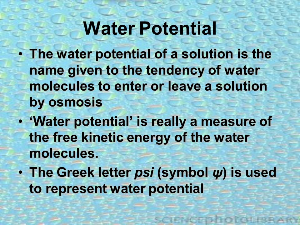 Water Potential The water potential of a solution is the name given to the tendency of water molecules to enter or leave a solution by osmosis.