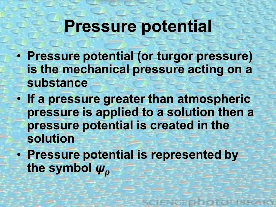 Pressure potential Pressure potential (or turgor pressure) is the mechanical pressure acting on a substance.