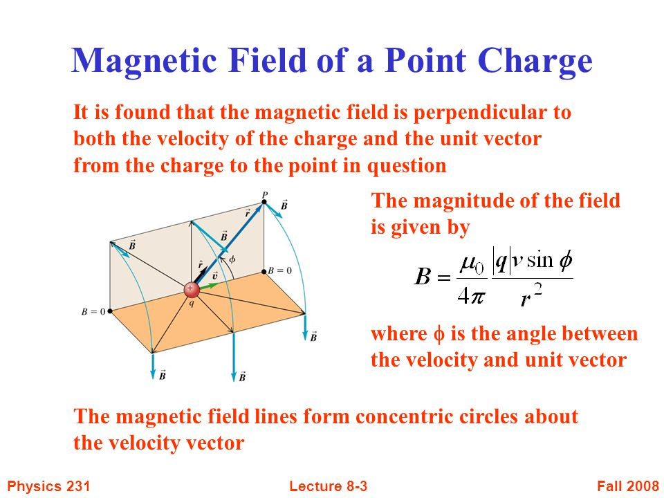 Magnetic Field of a Point Charge
