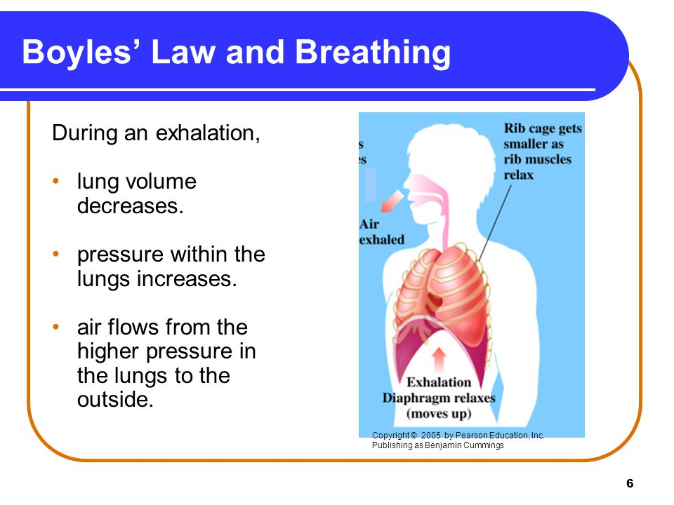 Boyles' Law and Breathing