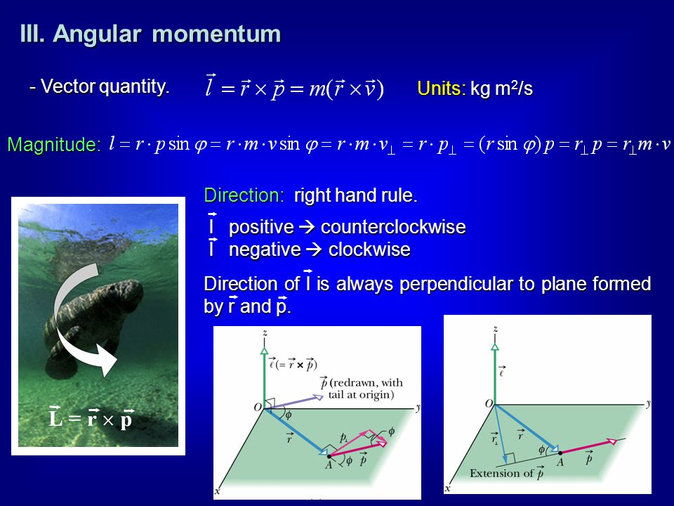 III. Angular momentum - Vector quantity. Units: kg m2/s Magnitude: