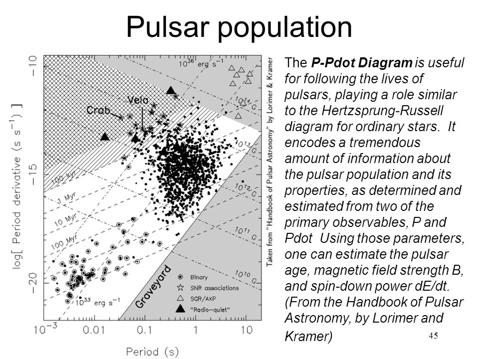 Pulsar population