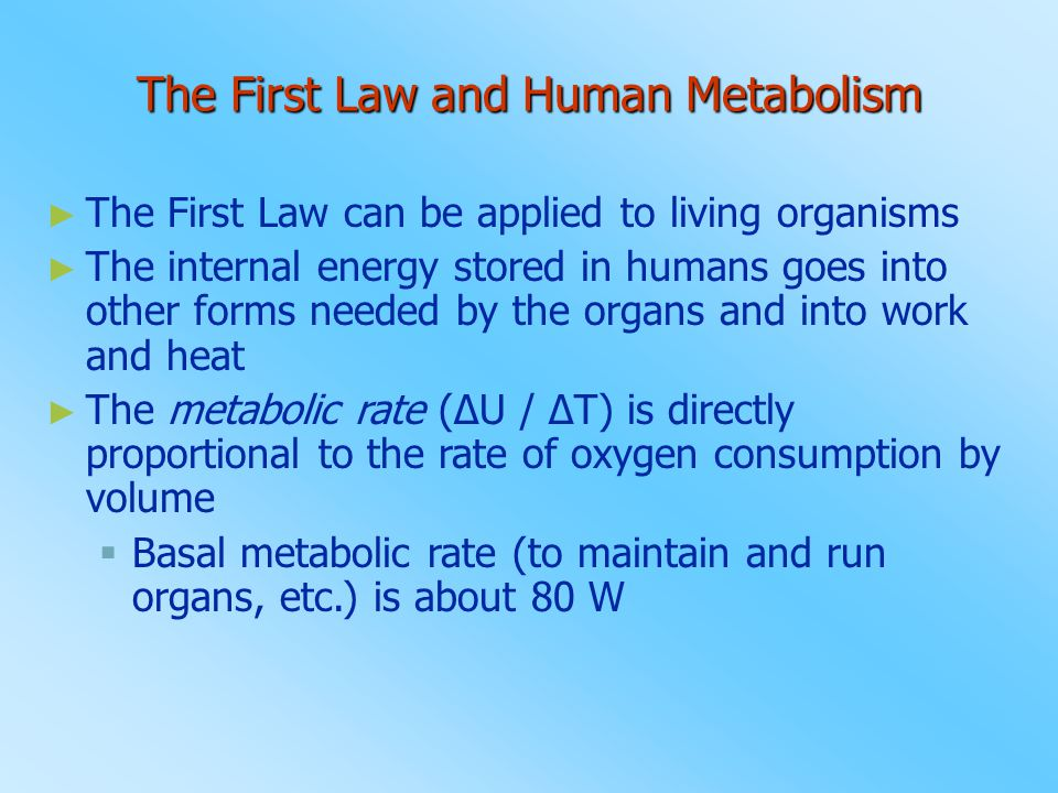 The First Law and Human Metabolism
